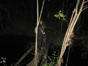 Лес ночью - переправа