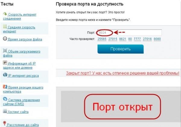 Проверяем порты на 2IP.ru