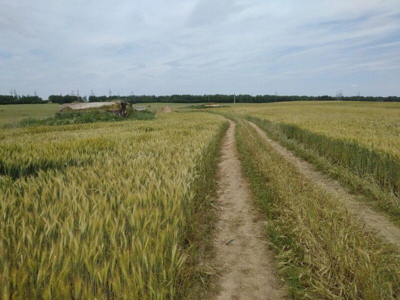 Дорога к КП 41. Бункер