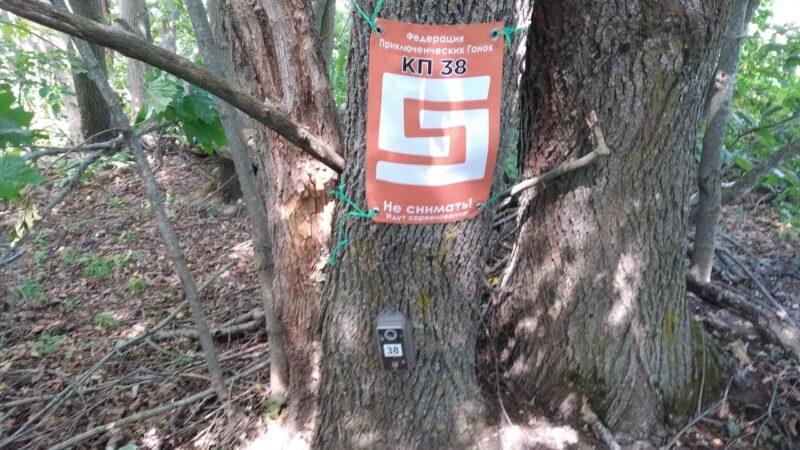 КП 38. Дерево на краю кладбища