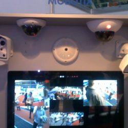 Выставка — TIBO 2012